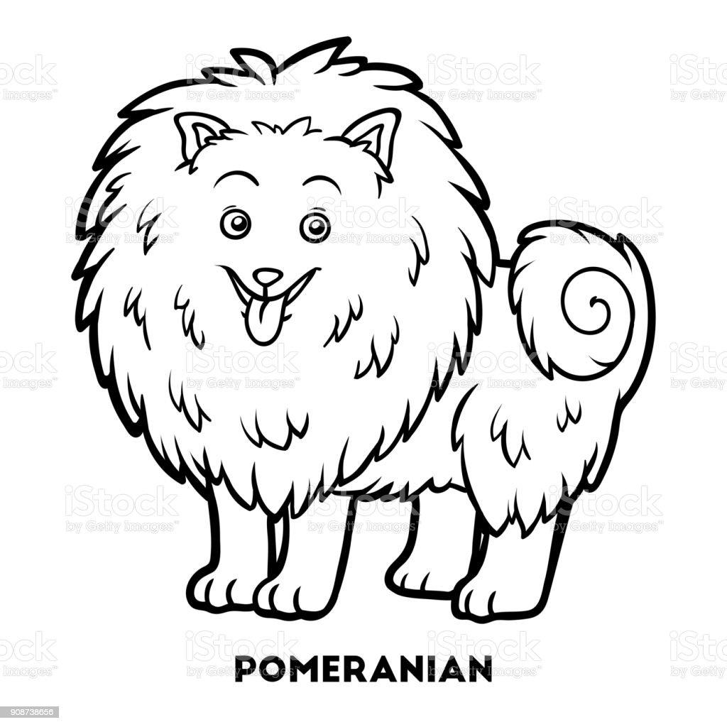 Boyama Kitabı Köpek ırkları Pomeranian Stok Vektör Sanatı Almanya