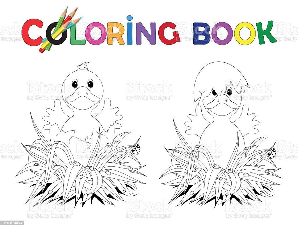 Libro Da Colorare Di Pasqua Nel Guscio Duovo Rotto Pulcini
