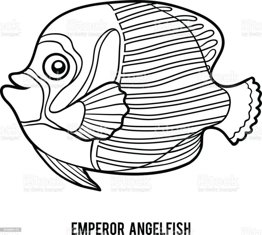 Boyama Kitabi Imparator Angelfish Stok Vektor Sanati Akvaryum