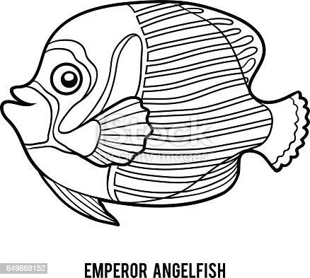 Coloring Book Emperor Angelfish Stock Vector Art 649868152