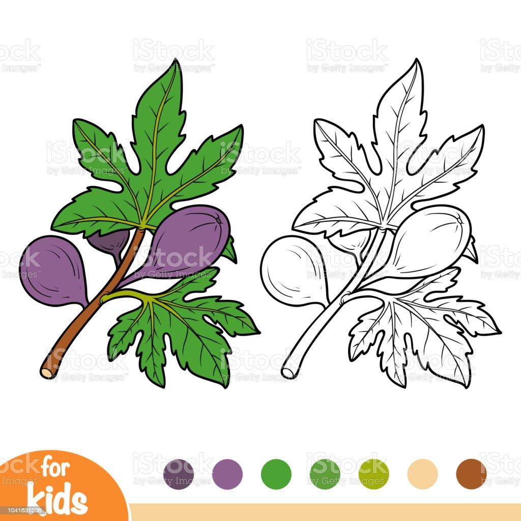 Coloring book fig tree branch stock vector art more - Dessin figuier ...