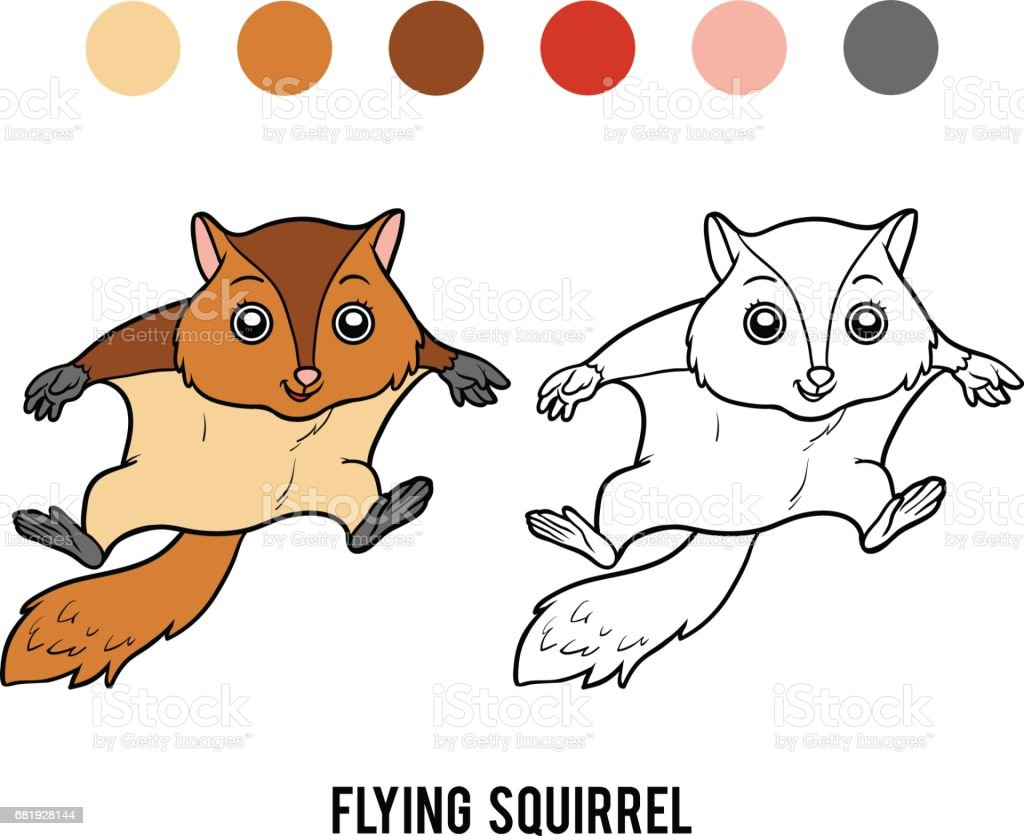 Coloring Book Flying Squirrel Stock Illustration Download Image