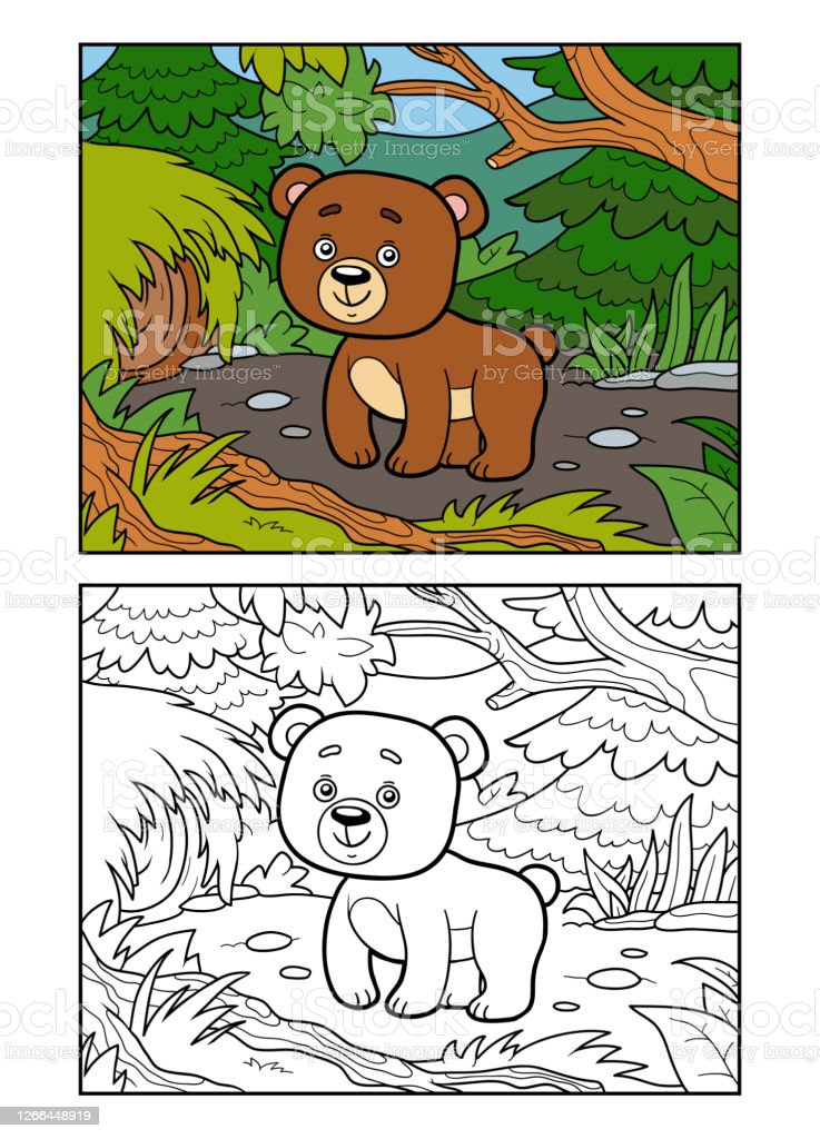 - Coloring Book For Children Bear In A Forest Stock Illustration - Download  Image Now - IStock