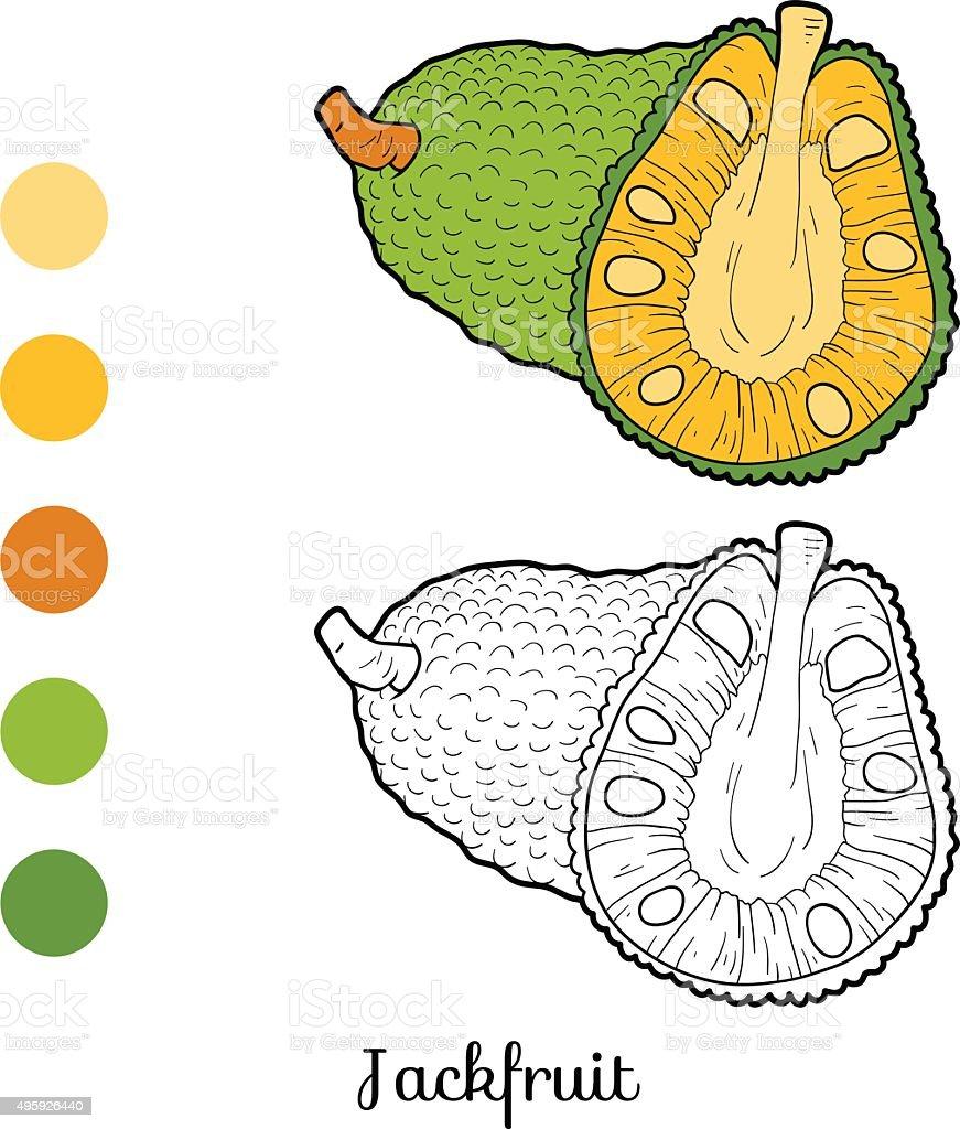 Vetores De Livro De Colorir Para Criancas Frutas E Legumes Jaca E