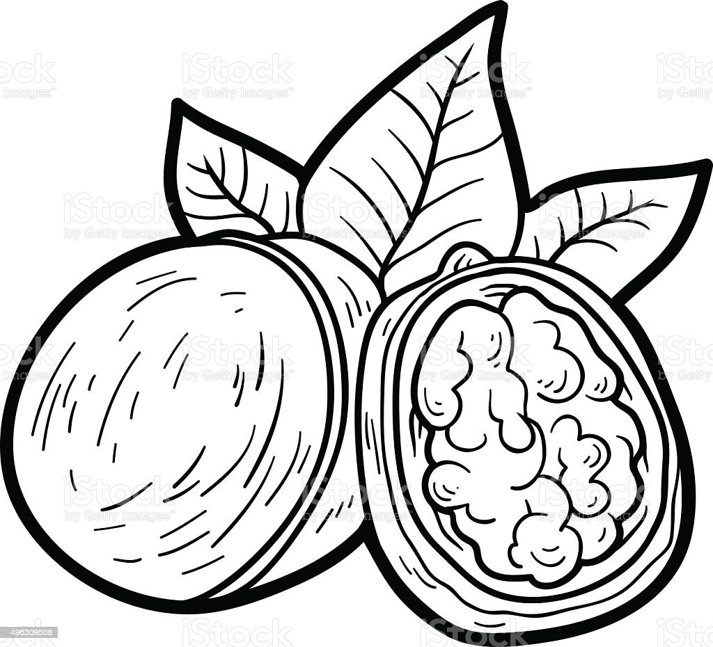 coloring book for children fruits and vegetables stock vector art