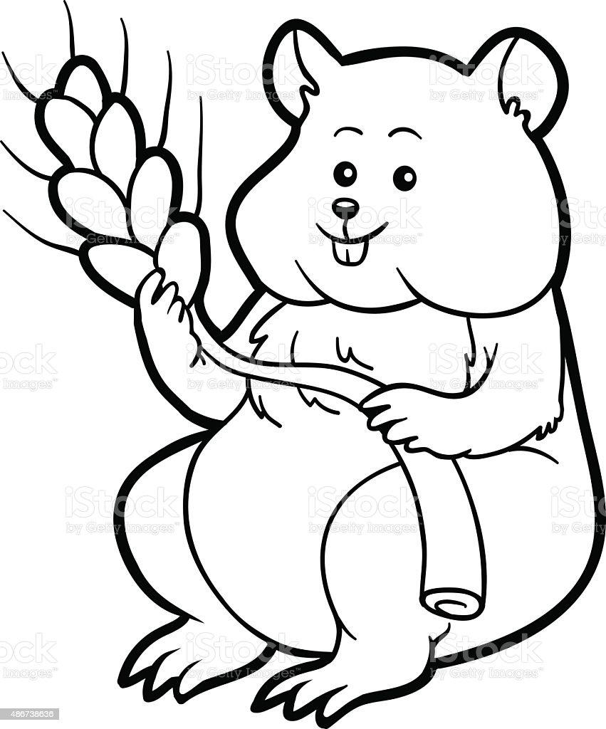Vetores De Livro De Colorir Para Criancas Hamster E Mais Imagens