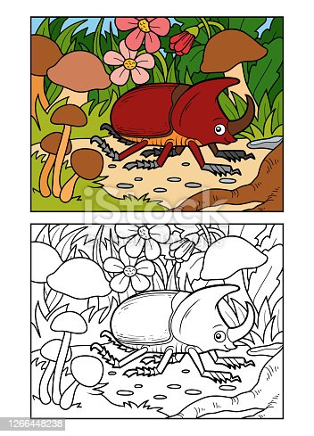 istock Coloring book for children, Rhinoceros beetle on a meadow 1266448238