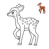 Coloring book for children. Forest animals. Cartoon cute fawn.
