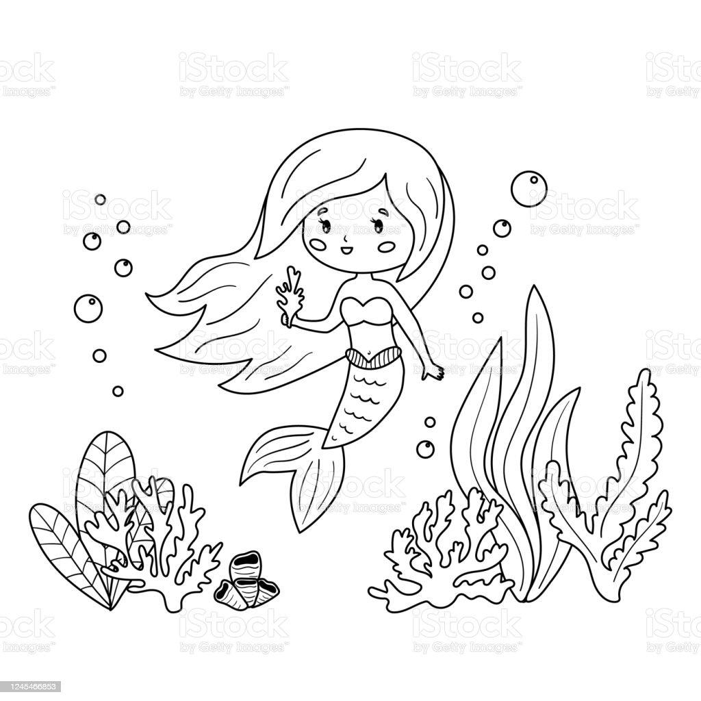 Malbuch Fur Kinder Kawaii Meerjungfrau Mit Korallen Und Algen Stock Vektor Art Und Mehr Bilder Von Ausmalen Istock