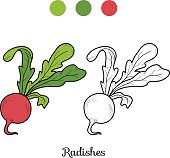 Coloring book: fruits and vegetables (radishes)