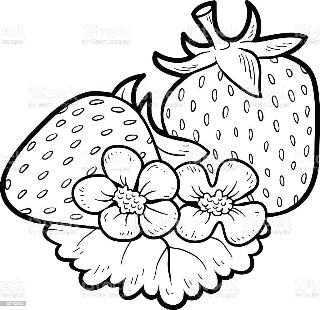 Vetores De Livro De Colorir Frutas E Legumes Morango E Mais