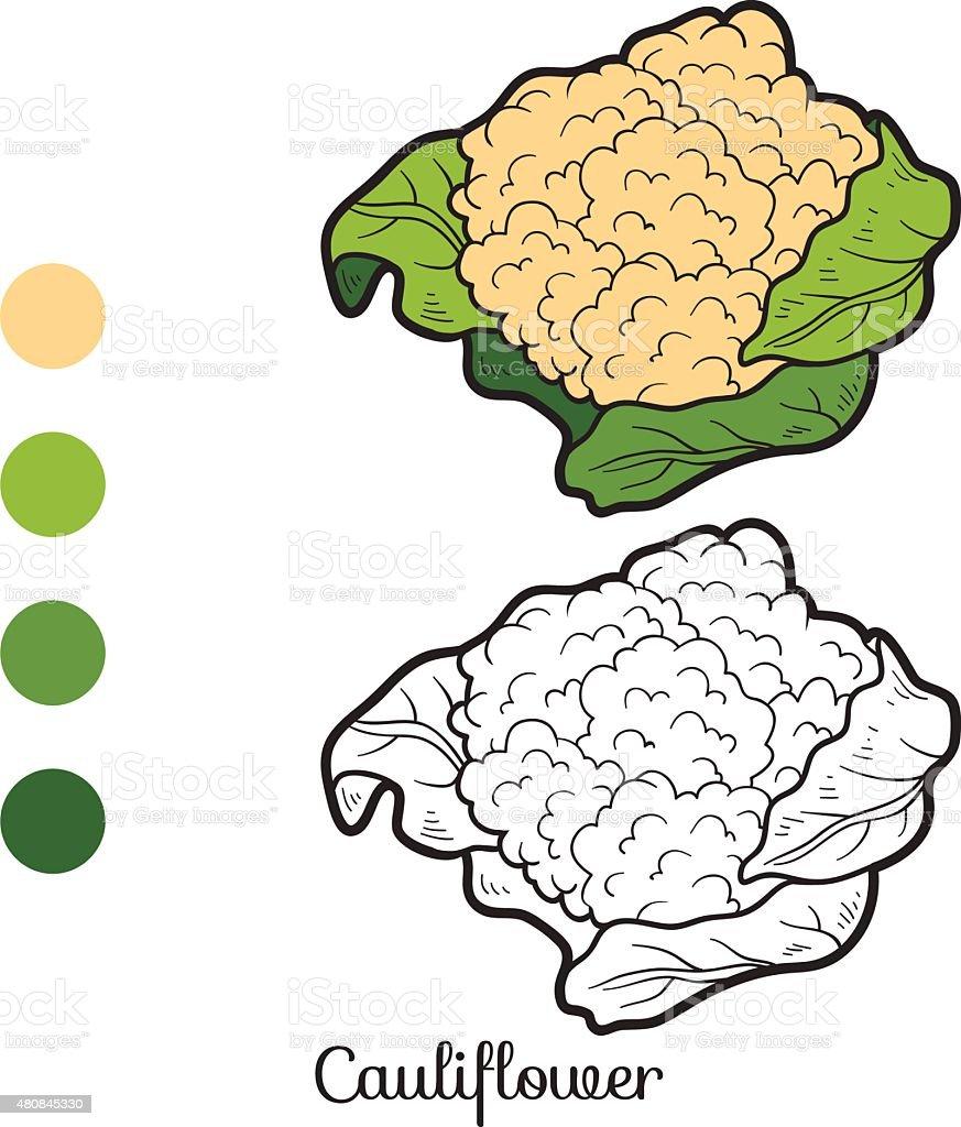 Livro De Colorir Frutas E Produtos Hortícolas Couveflor - Arte vetorial de  stock e mais imagens de 2015 - iStock