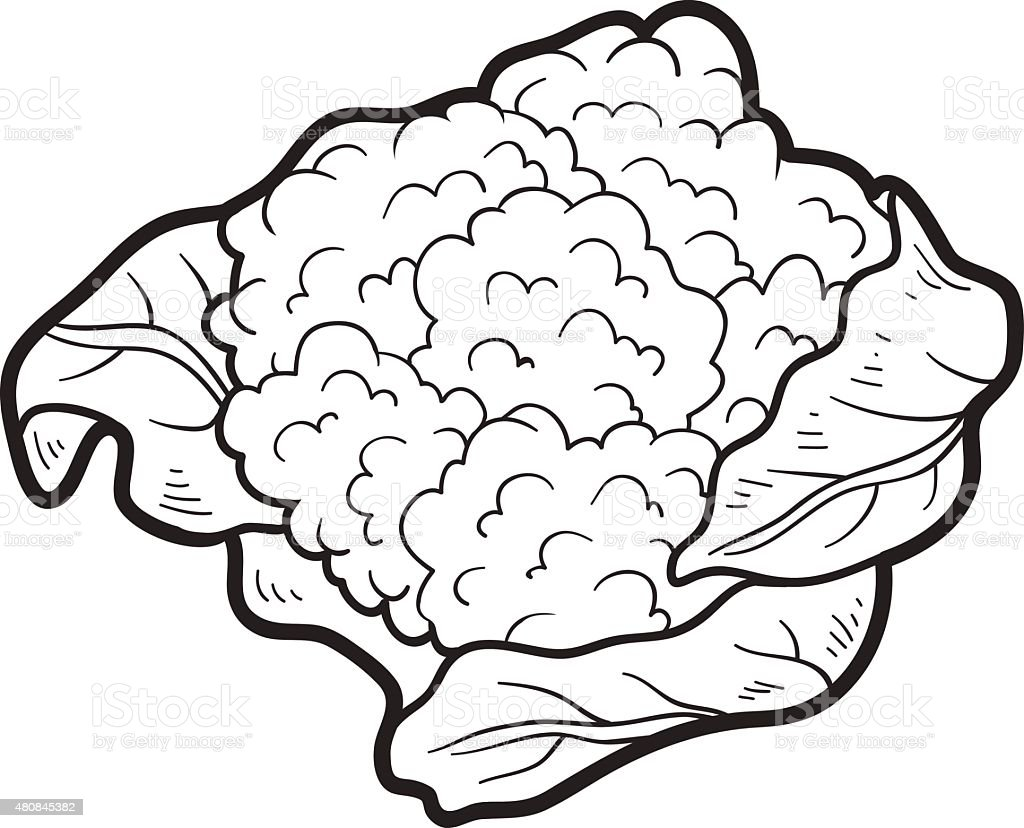 Coloring Book Fruits And Vegetables Cauliflower Royalty Free Stock Vector Art