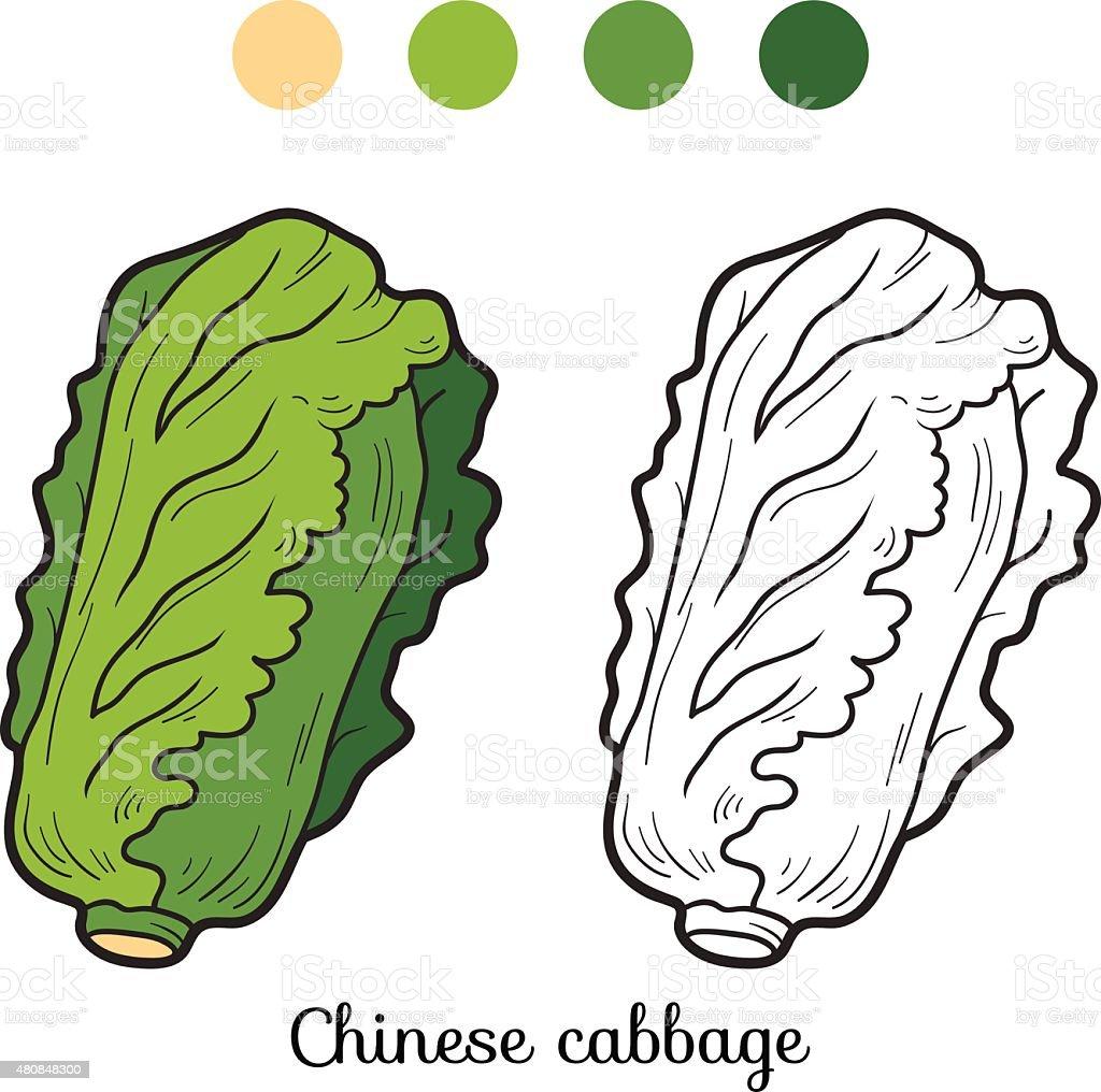 Libro Da Colorare Frutta E Verdura Cavolo Cinese Immagini