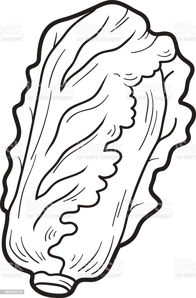 Книгараскраска Фрукты и овощи китайская капуста Сток ...