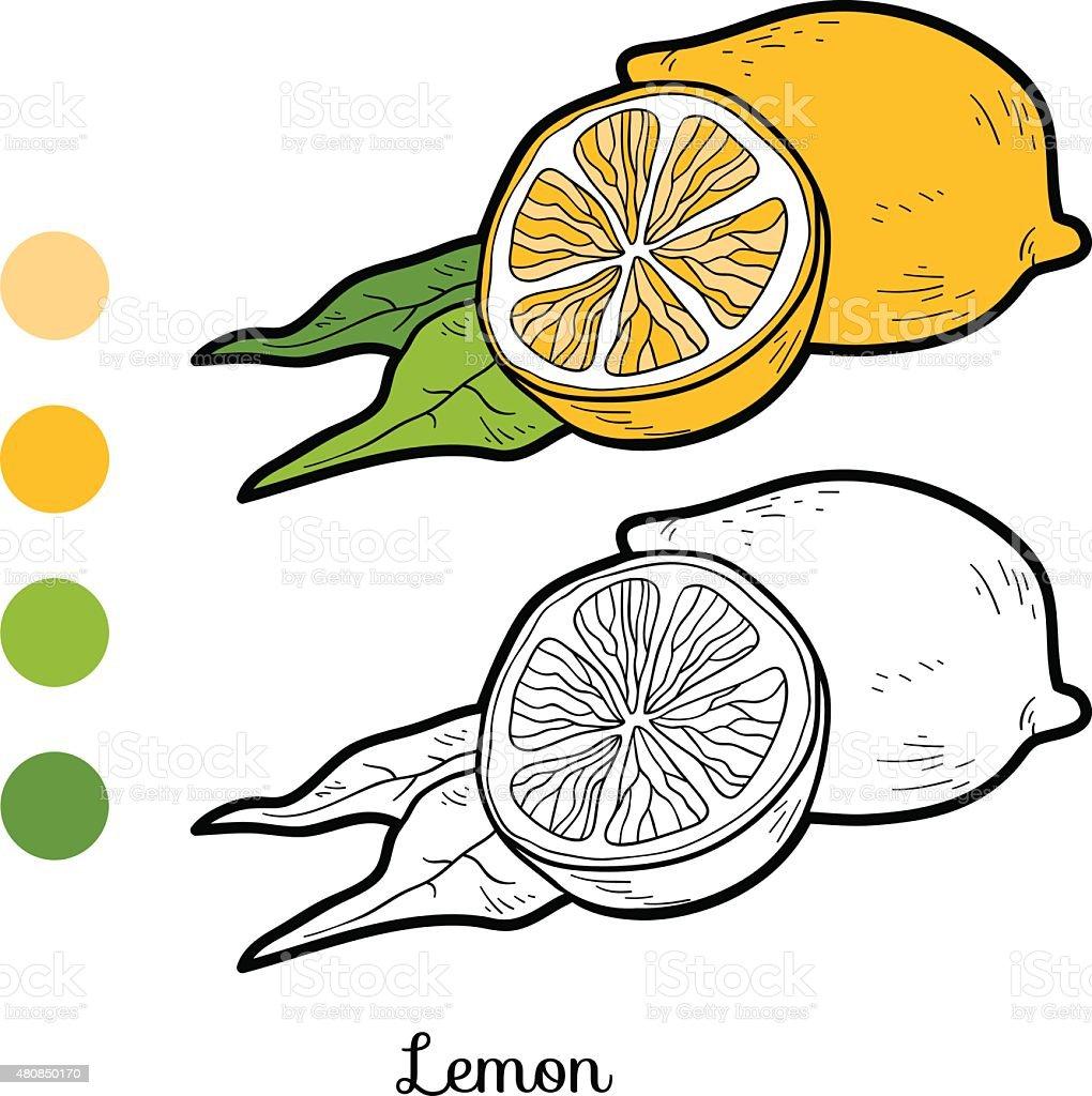Libro Para Colorear Frutas Y Verduras Limón - Arte vectorial de ...