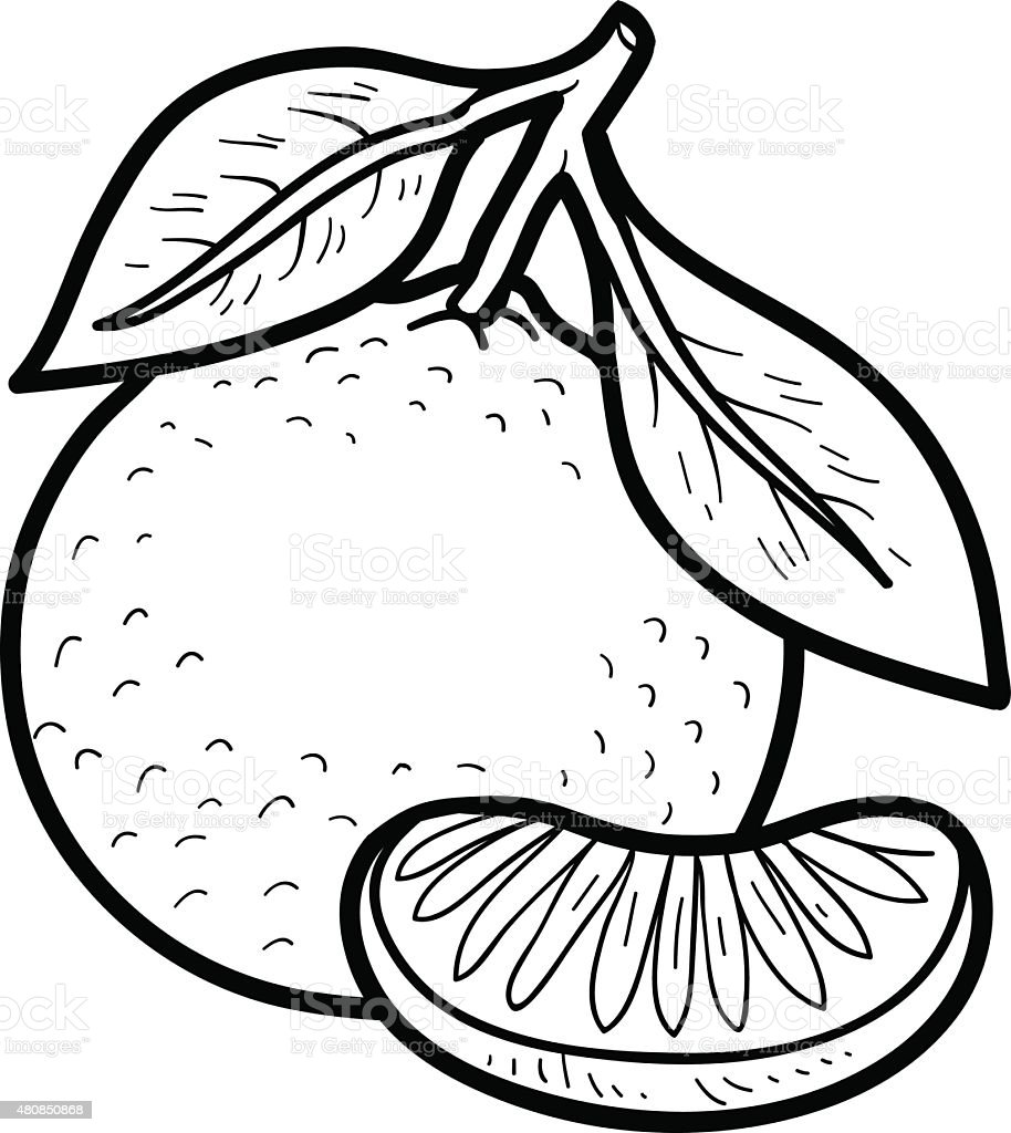 Ilustración De Libro Para Colorear Frutas Y Verduras Mandarín Y Más