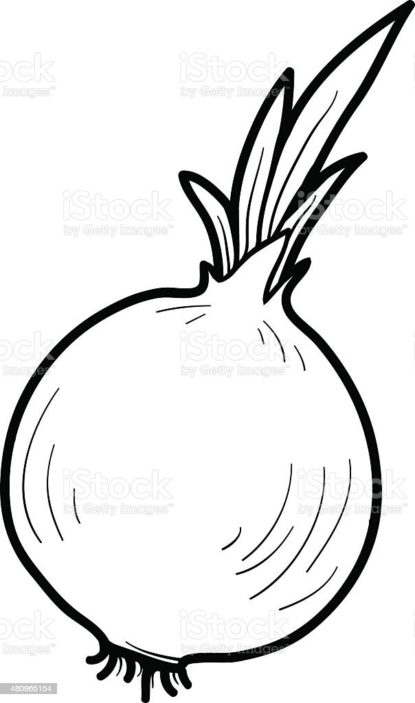 Coloring Book Fruits And Vegetables Onion Royalty Free Stock Vector Art