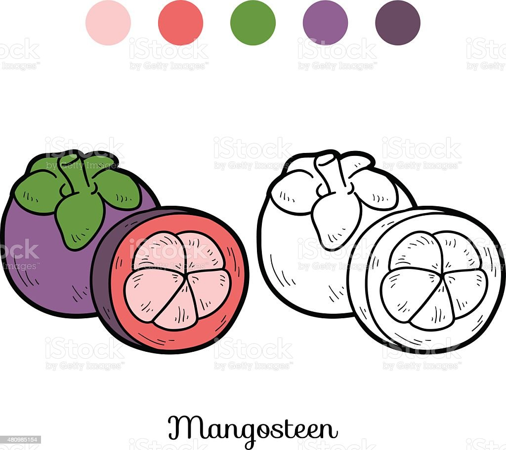 Coloring Book Fruits And Vegetables Mangosteen Royalty Free Stock Vector Art