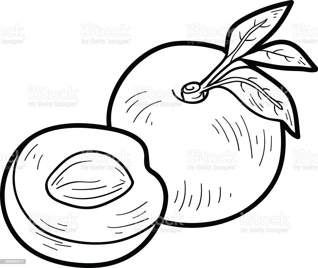 Coloriage Fruit Kaki.Livre De Coloriage Fruits Et Legumes Nectarine Vecteurs Libres De