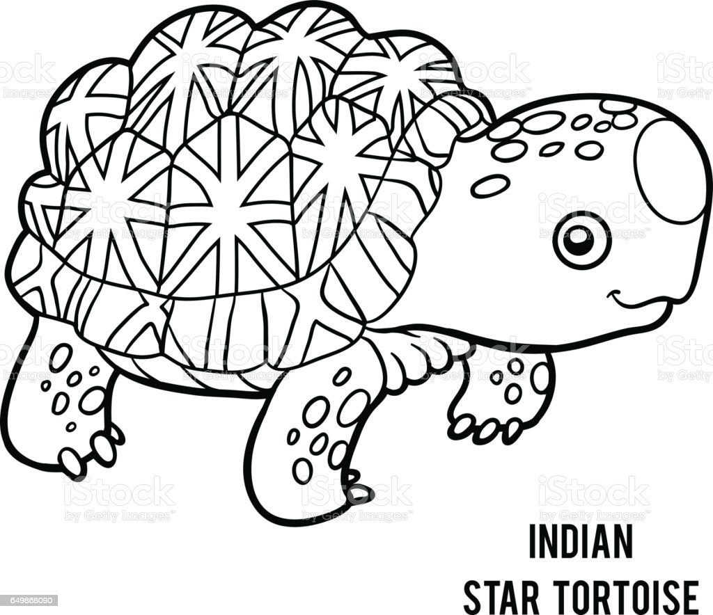 coloring book indian star tortoise stock vector art 649868090 istock