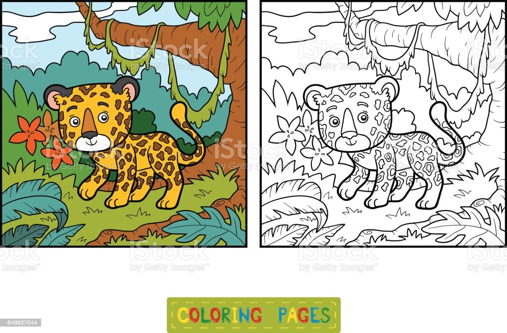 Coloring book, jaguar and background ベクターアートイラスト