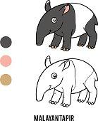 Coloring book, Malayan tapir
