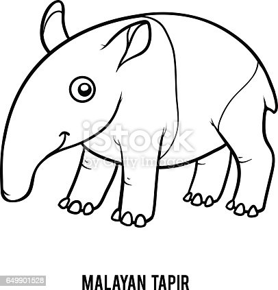 Coloring Book Malayan Tapir Stock Vector Art & More Images