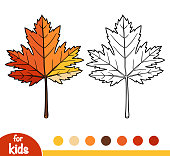 Coloring book, Maple leaf