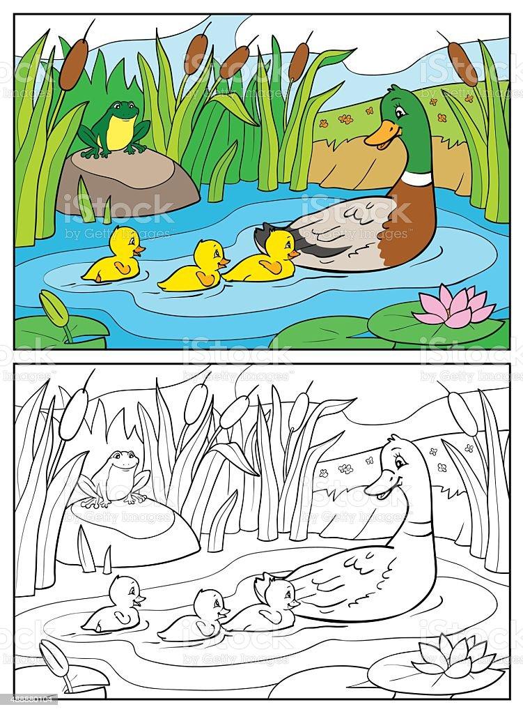 Ilustración de Libro Para Colorear Madre Pato Y Ducklings Con Rana y ...