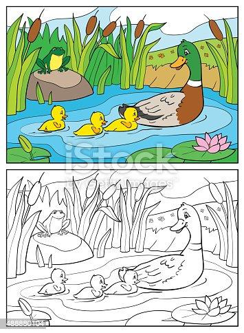 istock Pato salvaje de vector ilustración en estanque con cañas ...