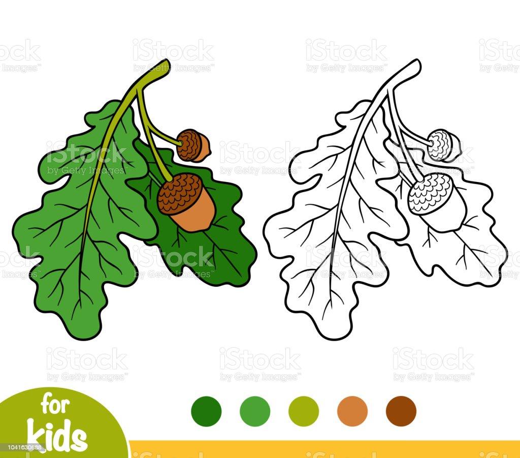 Coloriage Arbre Chene.Livre De Coloriage Branche De Chene Vecteurs Libres De Droits Et