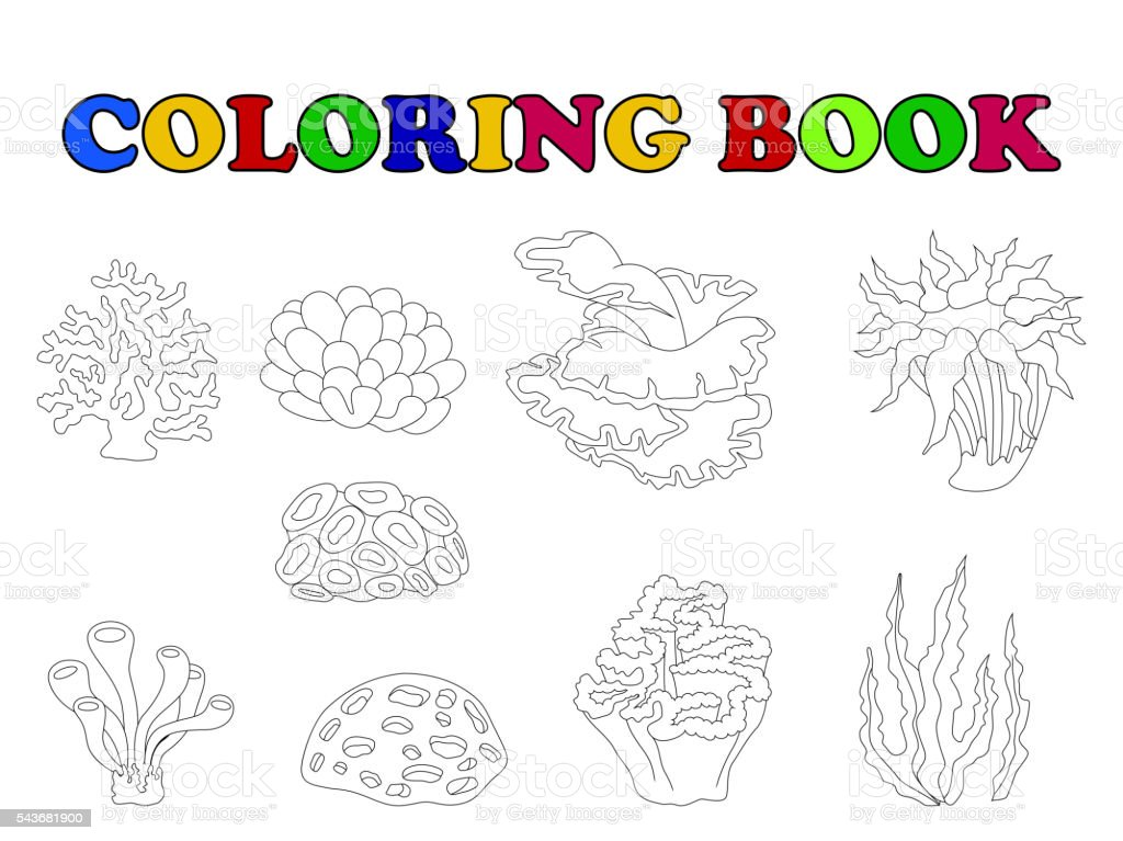 vector illustration of coloring book of beautiful coral collection