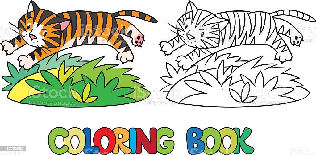 Malbuch Mit Lustiger Wilden Tiger Vektor Illustration 487760552 | iStock
