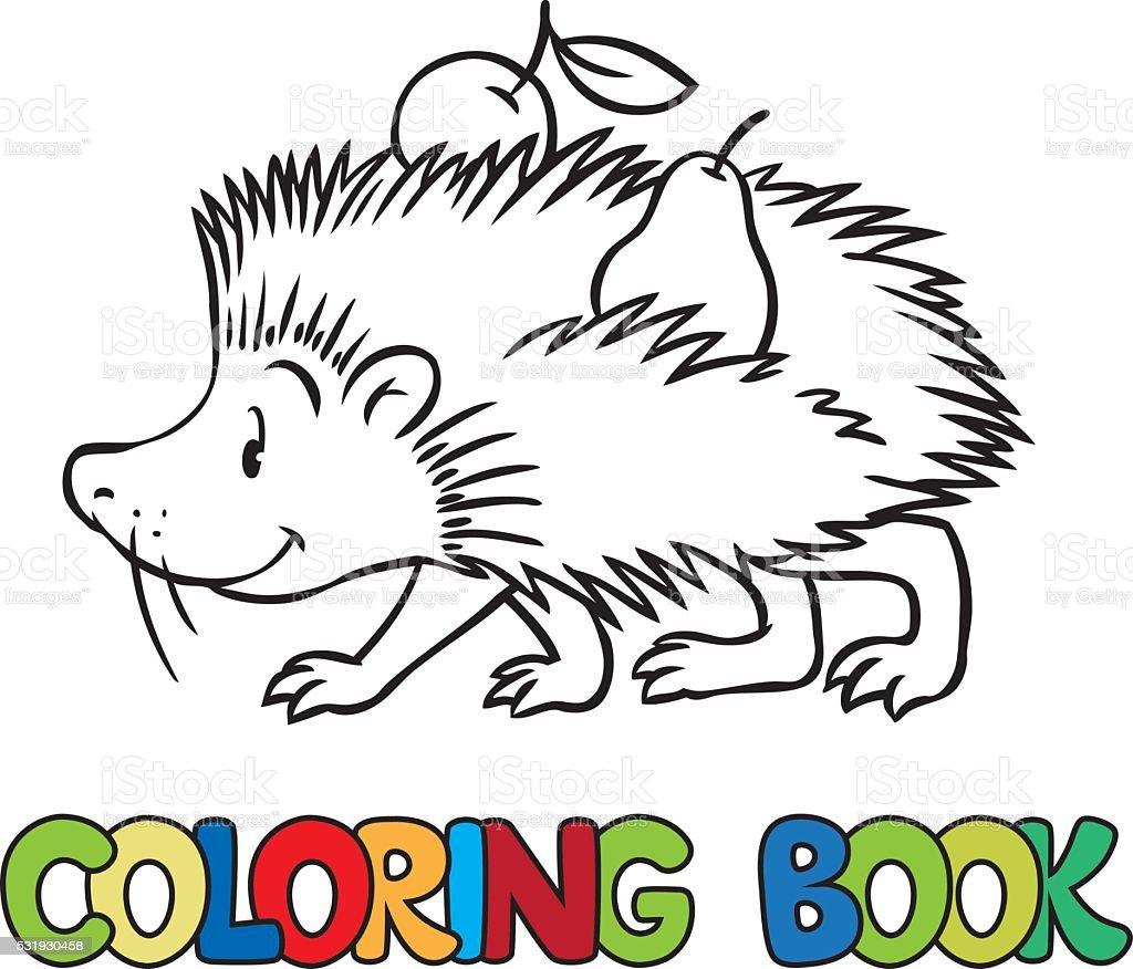 libro para colorear de poco gracioso erizo illustracion libre de derechos libre de derechos