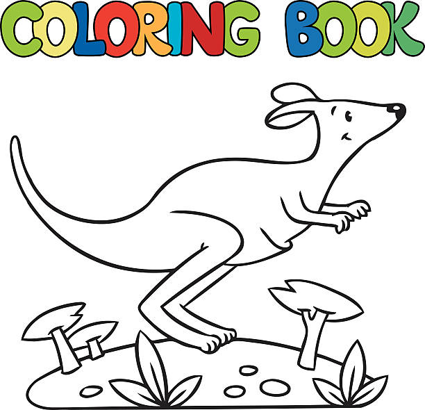 Coloring Book Of Little Kangaroo Clip Art Vector Images Illustrations