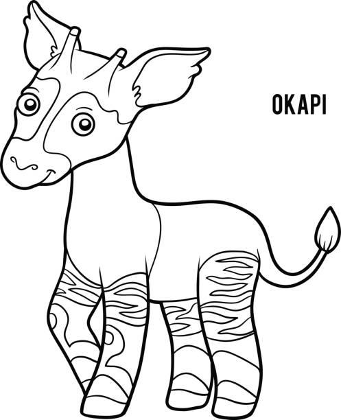 Vectores de Okapi y Illustraciones Libre de Derechos - iStock