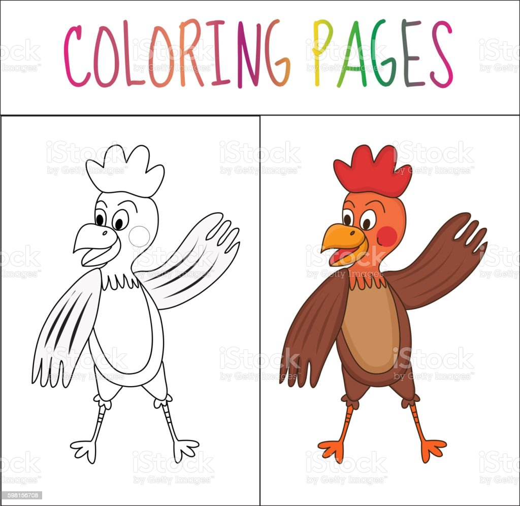 Coloring Book Page Cock Sketch And Color Version Royalty Free
