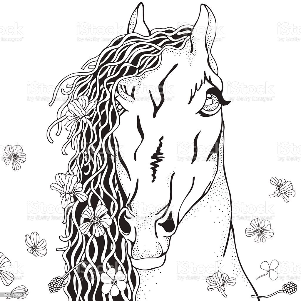 Coloring Book Page For Adult And Children Funny Horse Stock ...