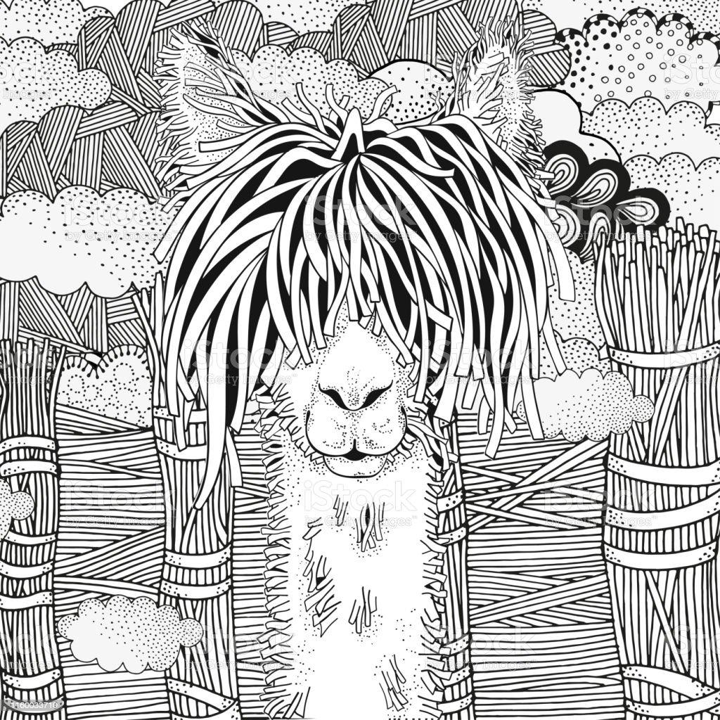 Yetiskin Ve Cocuklar Icin Boyama Kitabi Sayfasi Llama Doodle