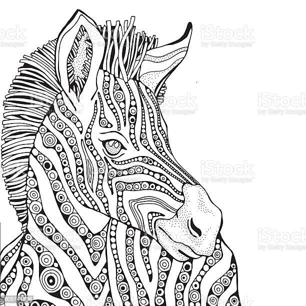 coloring book page for adult and children zebra vector id