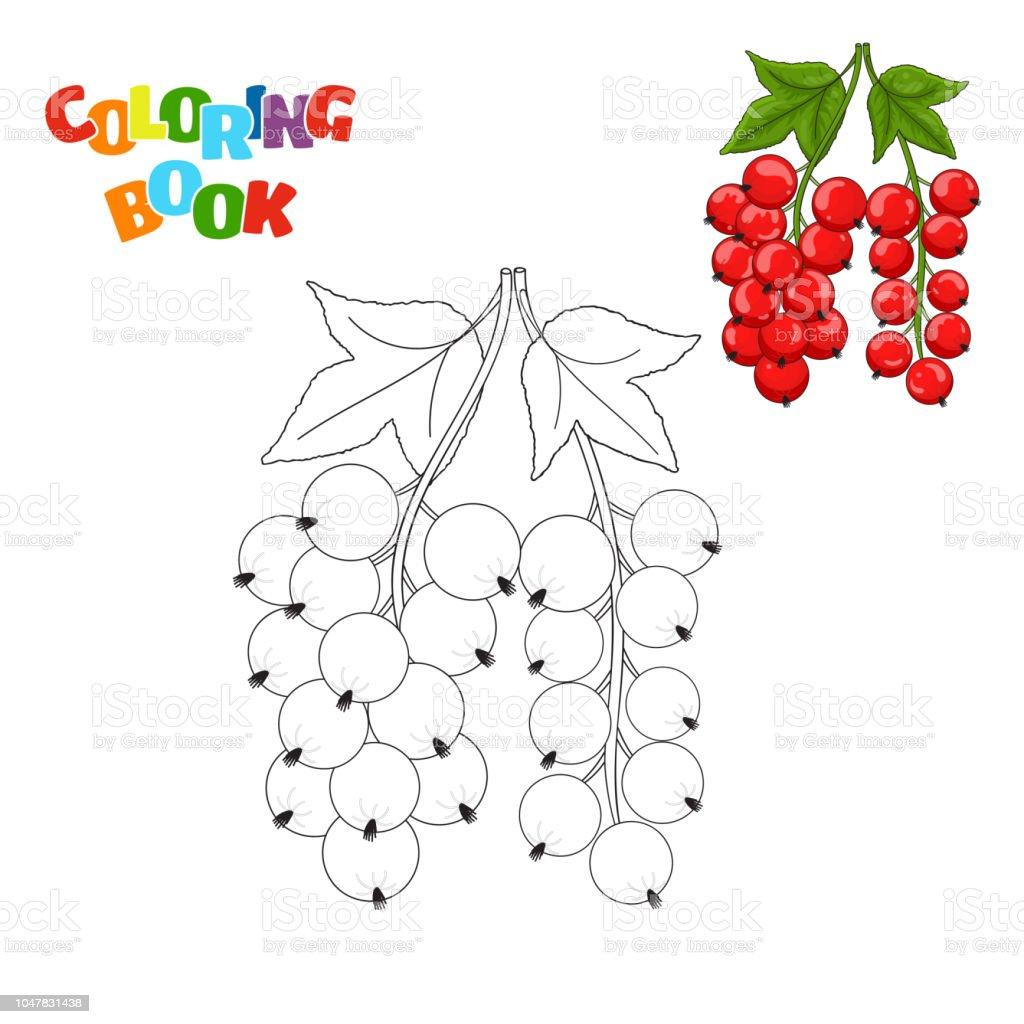 Coloring Book Seite Für Kinder Im Vorschulalter Mit Konturen Von Roten  Johannisbeeren Und Eine Farbige Kopie Davon Vektorillustration Der Roten