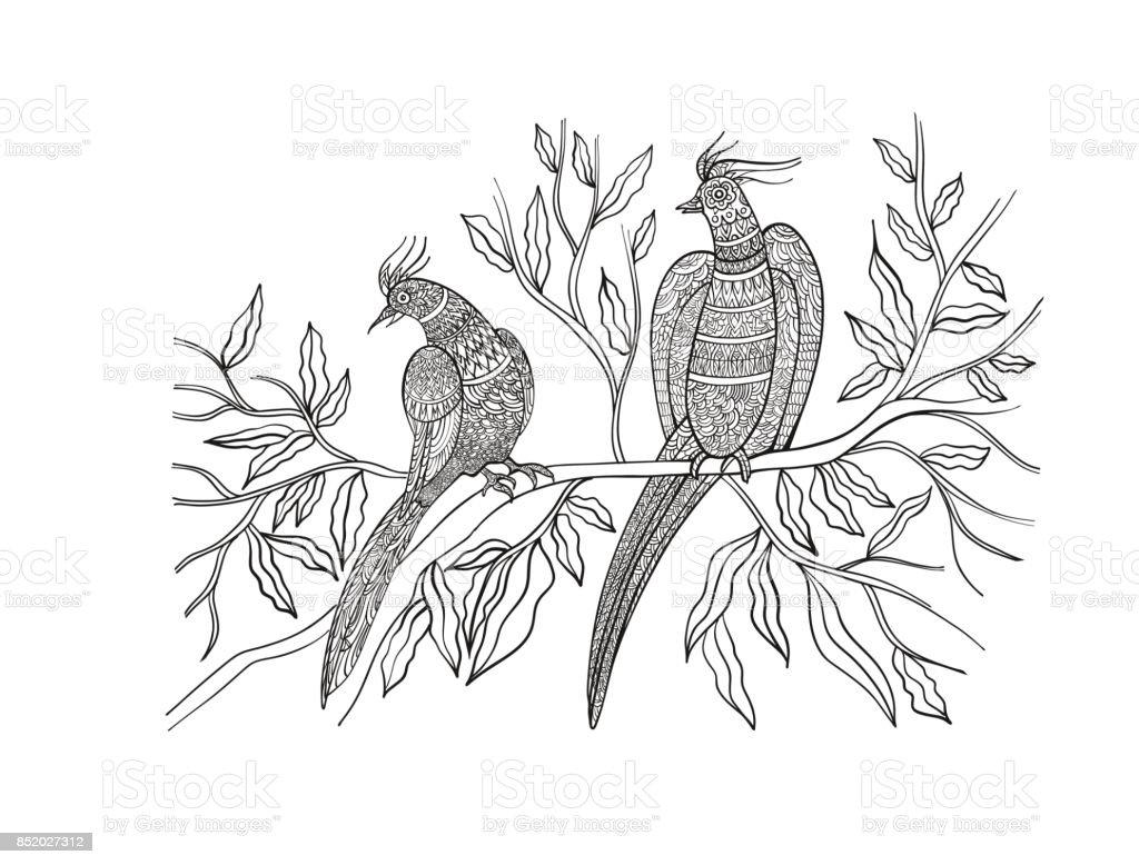 Ilustración de Página De Libro Para Colorear Dibujado A Mano Aves ...