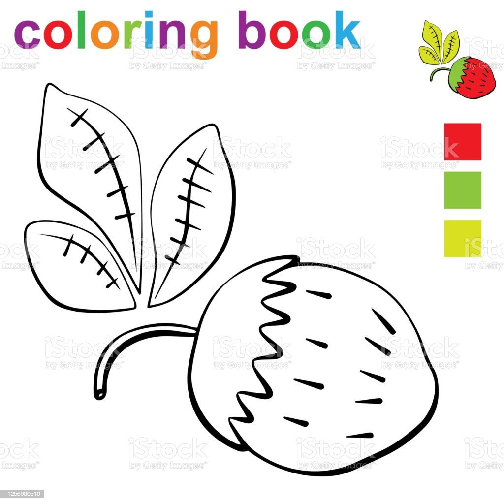 - Coloring Book Page Template With Strawberry For Kids Stock Illustration -  Download Image Now - IStock