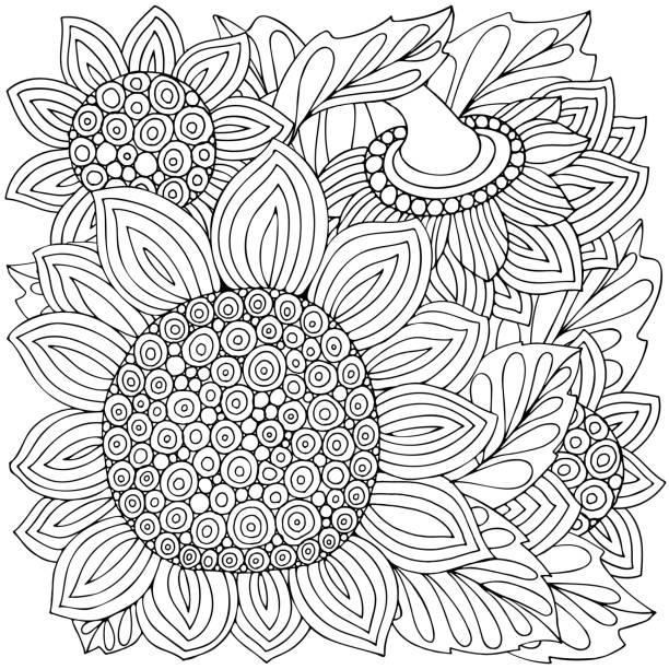 Vectores de Maravilla Flor Monocromo Dibujo Para Libro De Colorear e ...