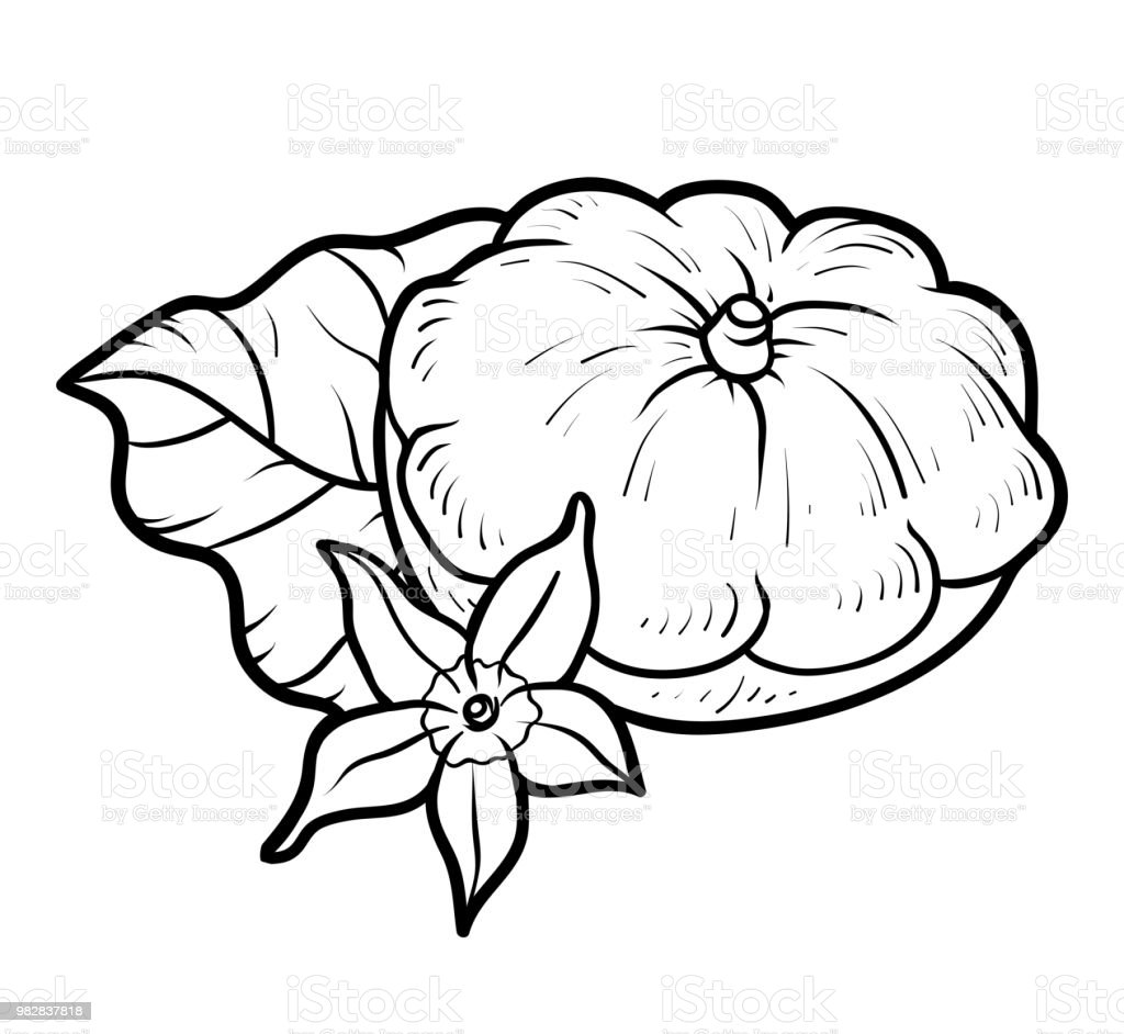Coloriage courge - Dessin courge ...