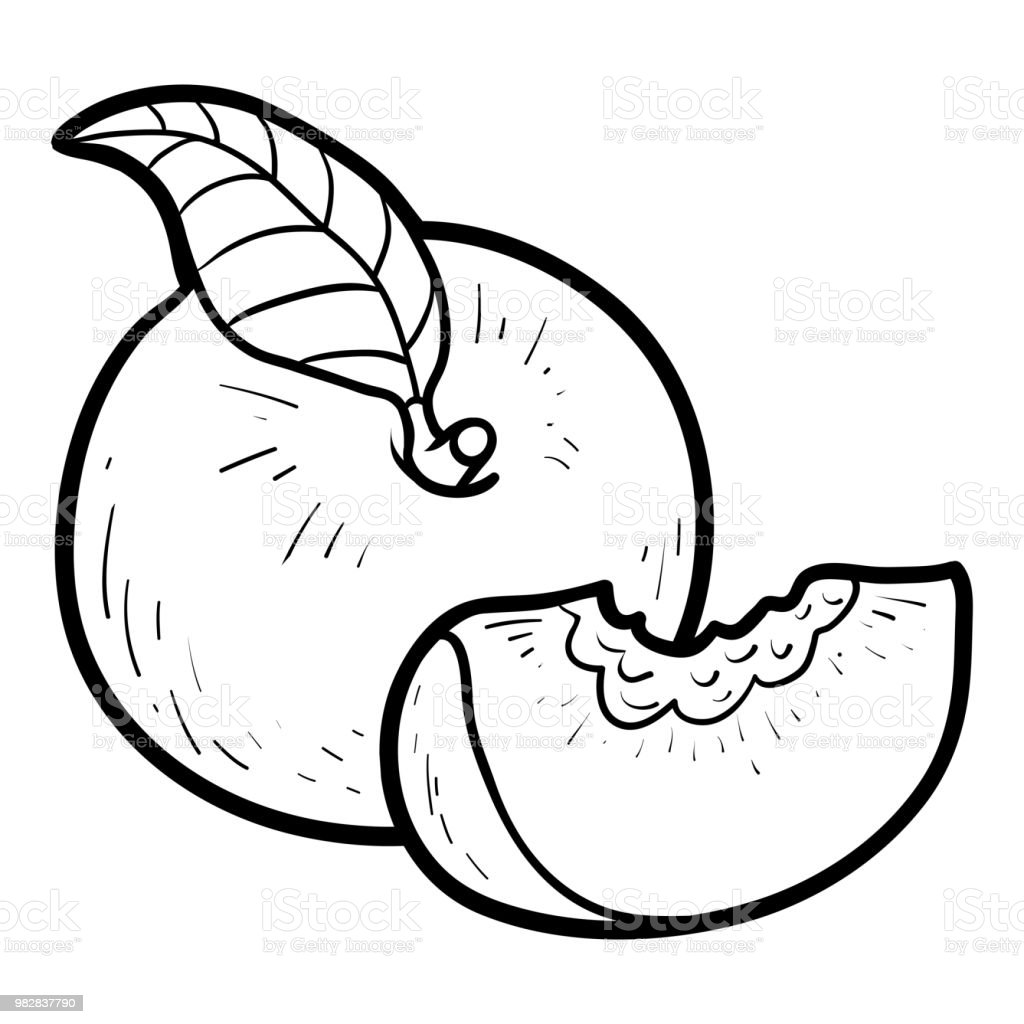 Coloring Book Peach Royalty Free Stock Vector Art Amp More