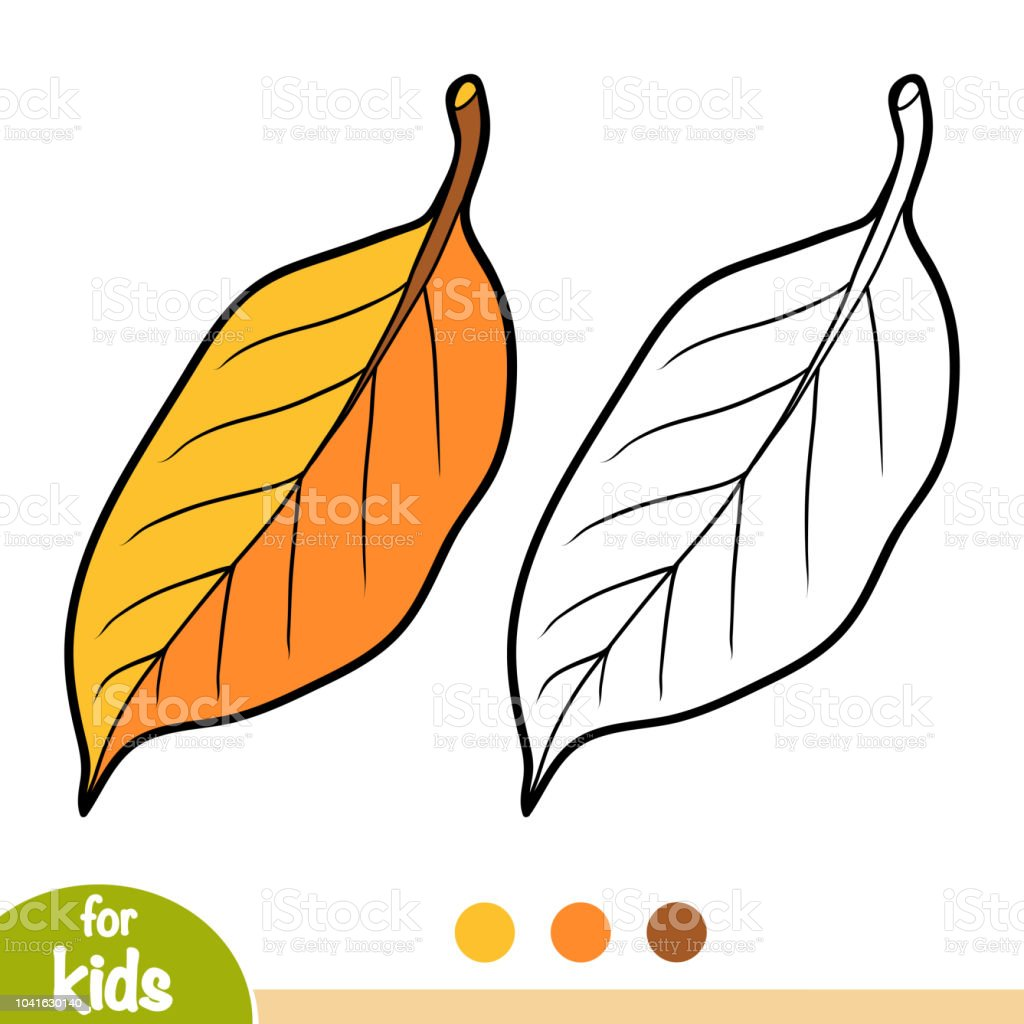 Boyama Kitabı Armut Ağacı Yaprak Stok Vektör Sanatı Anaokulunin