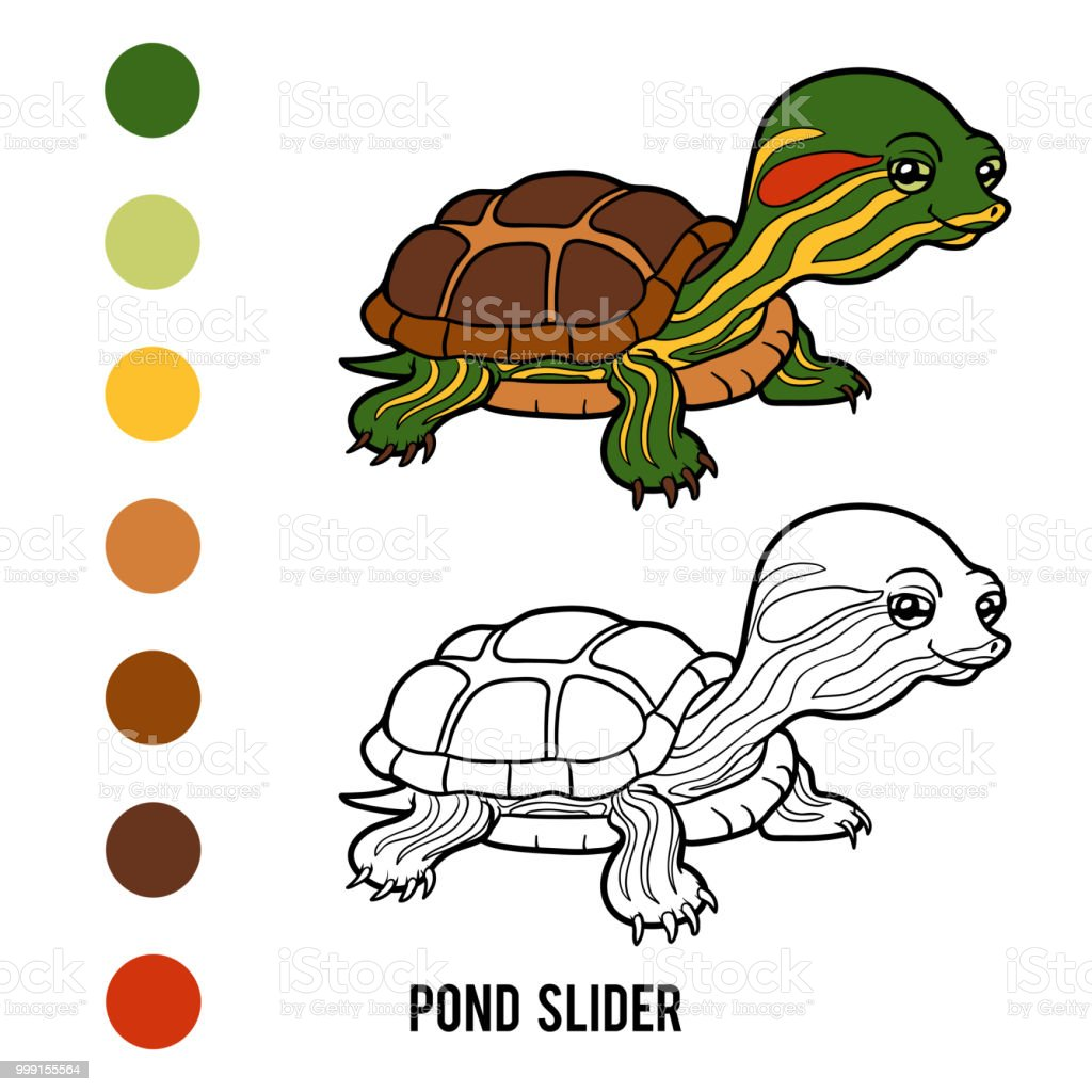 Coloring Book Pond Slider Stock Vector Art & More Images of Animal ...