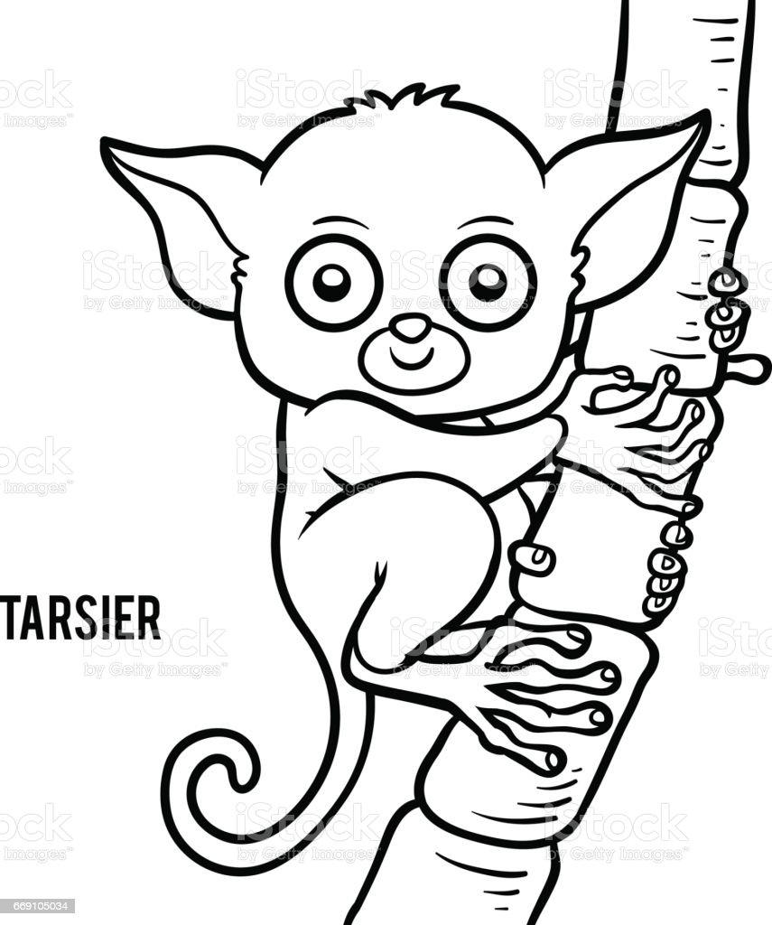 Coloring Book Tarsier Lizenzfreies Stock Vektor Art Und Mehr Bilder Von Affe